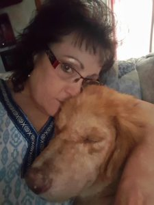 Sumo the dog snuggles with foster mom.